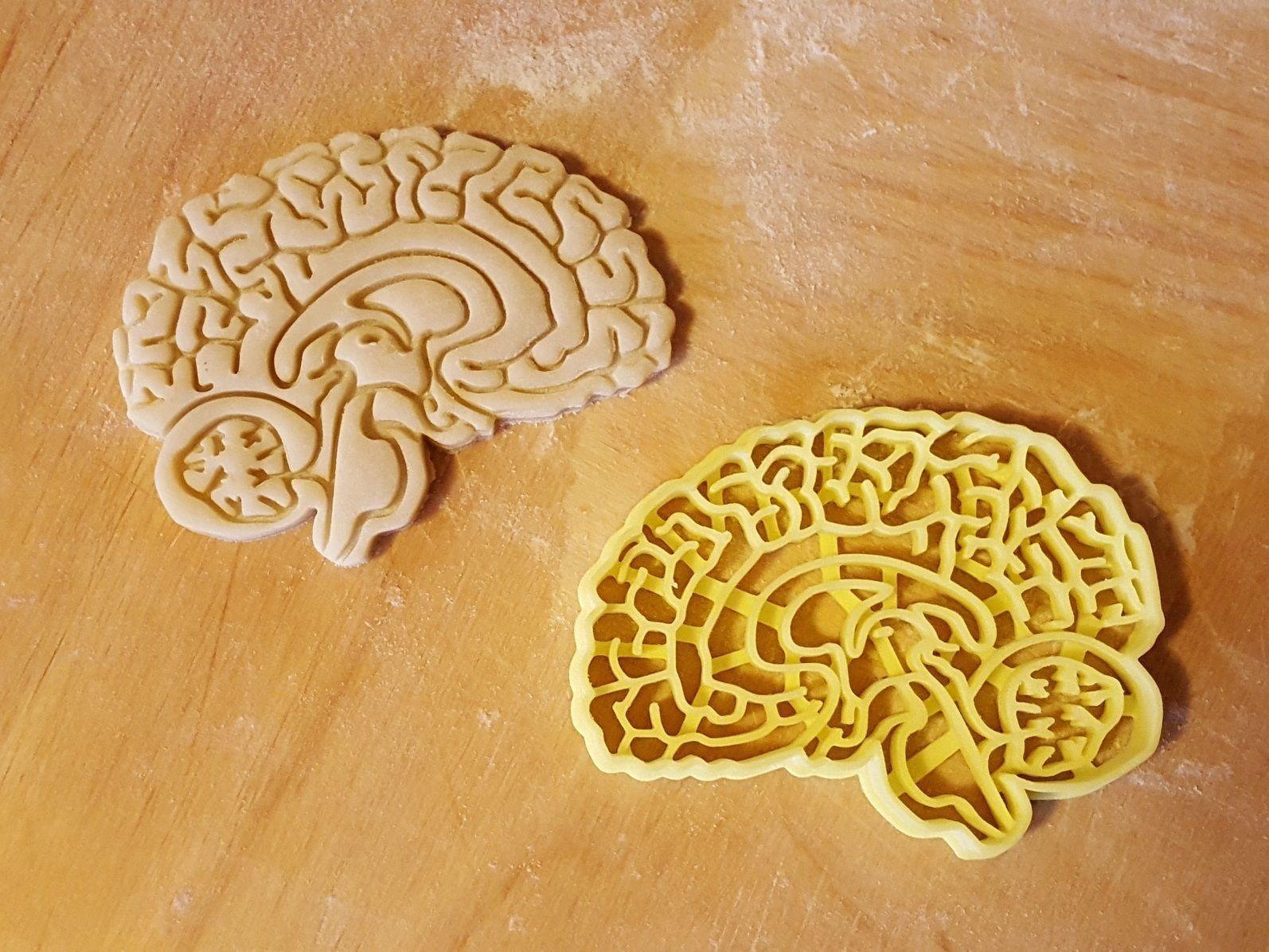Brain cookie cutter