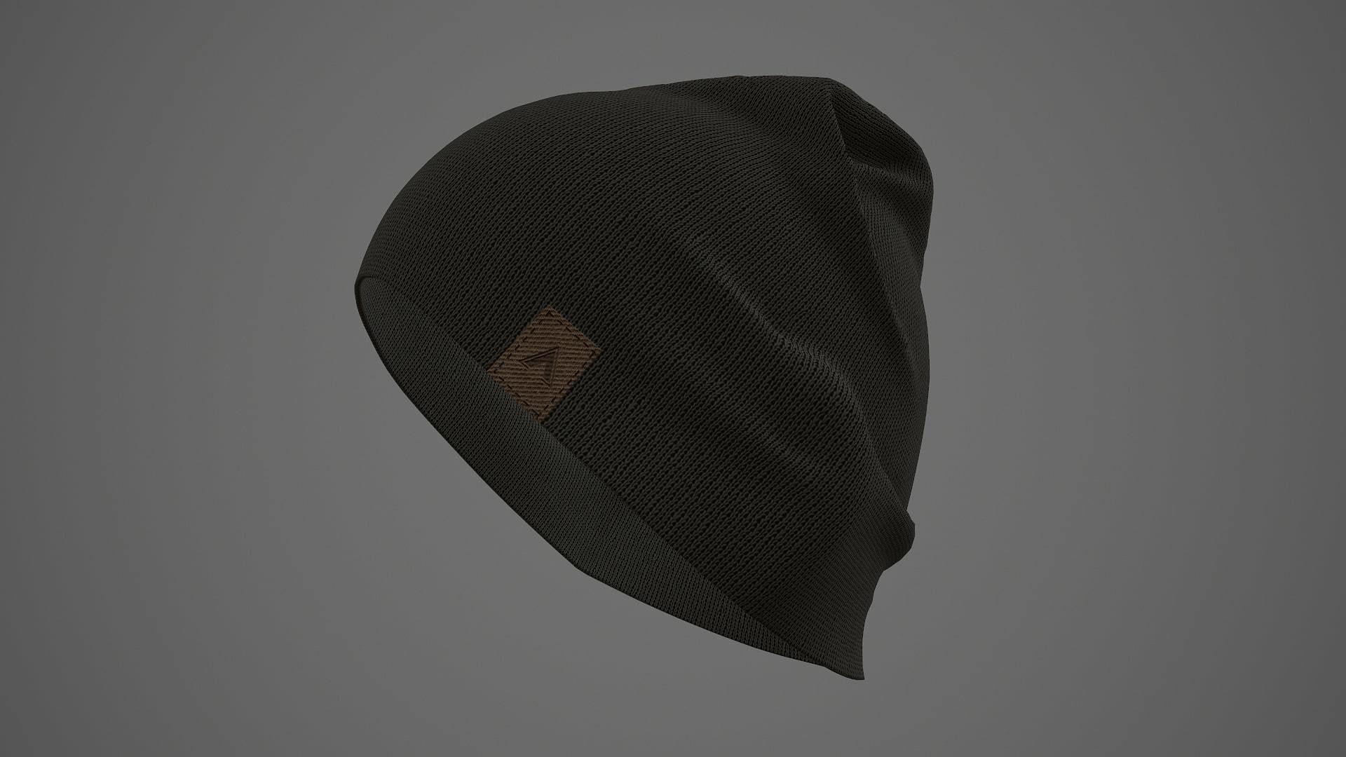 Beanie cap winter hat PBR