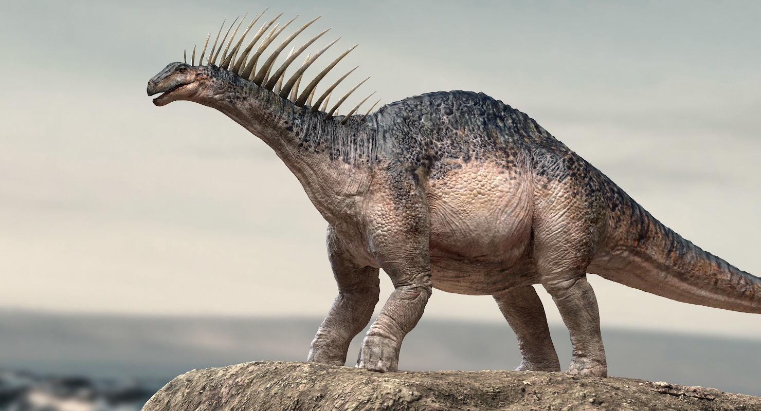 Amargasaurus 3D Rigged model