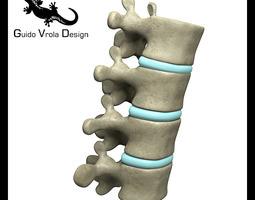 Lumbar vertebrae 3D