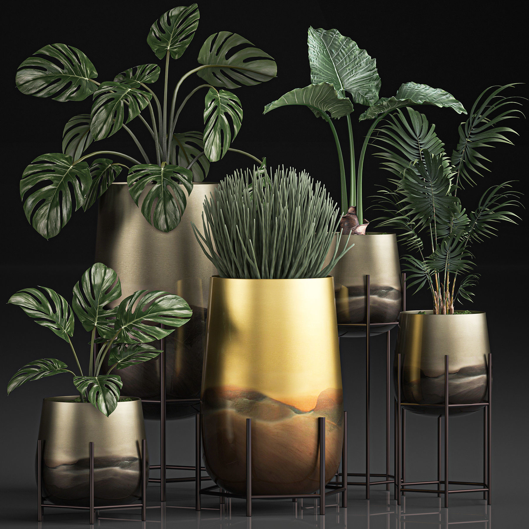 Decorative plants in Luxury Gold Pots for the interior 544