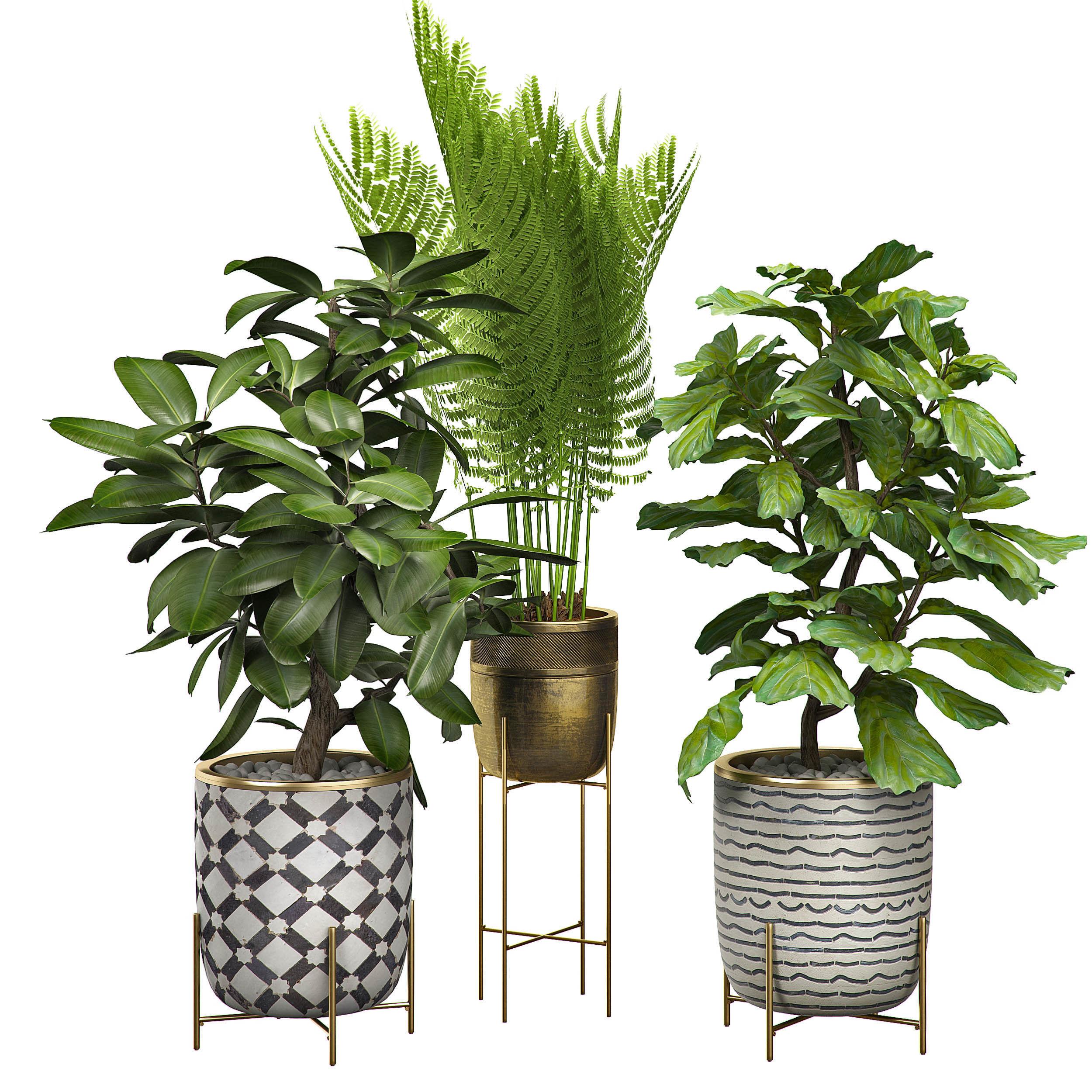 Potted plants Set 6