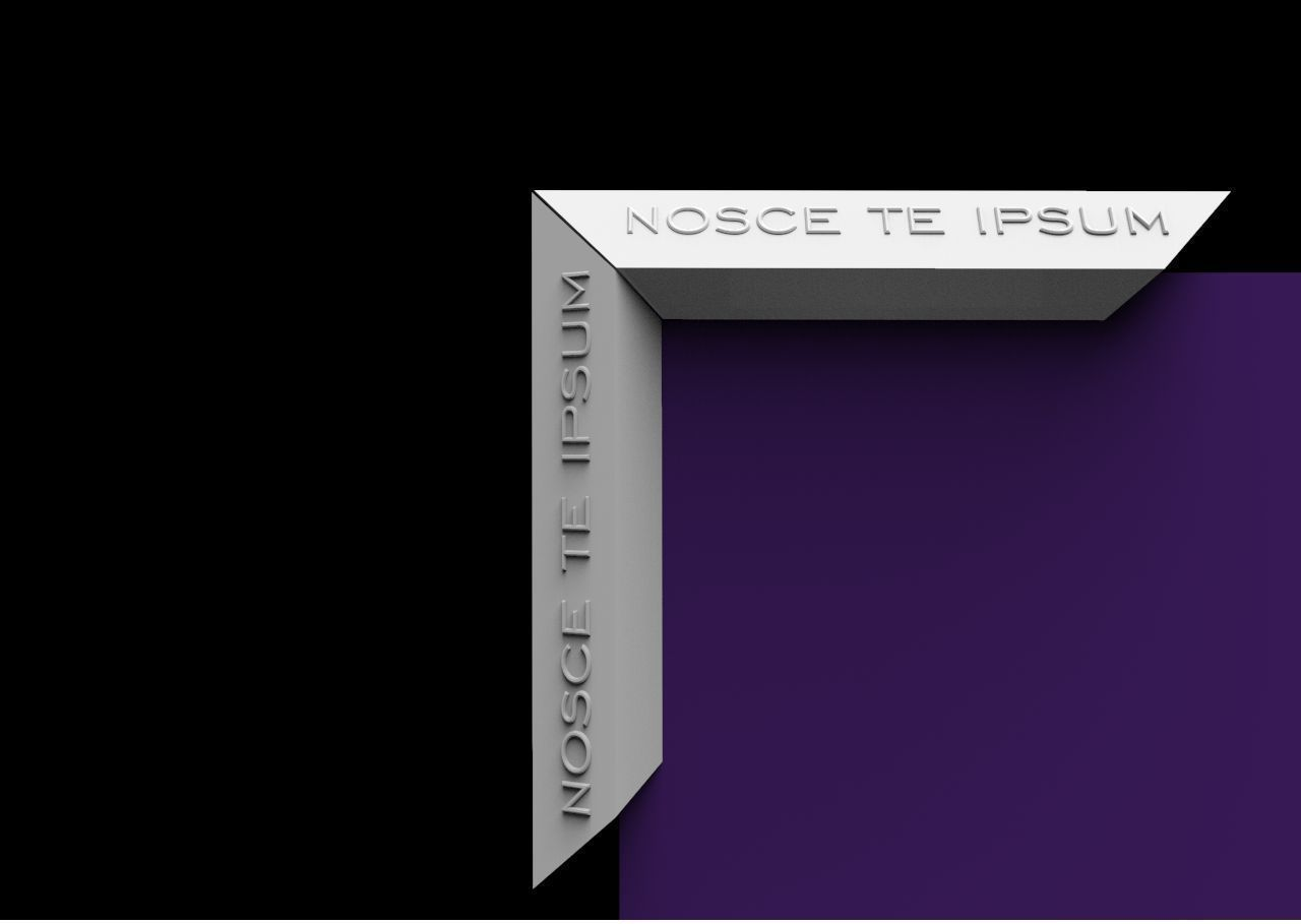 Mirror frame with inscription NOSCE TE IPSUM