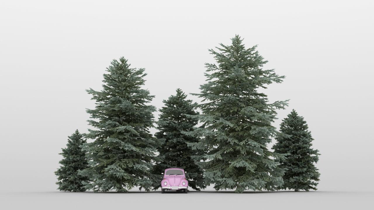 Fir Tree Pack 01