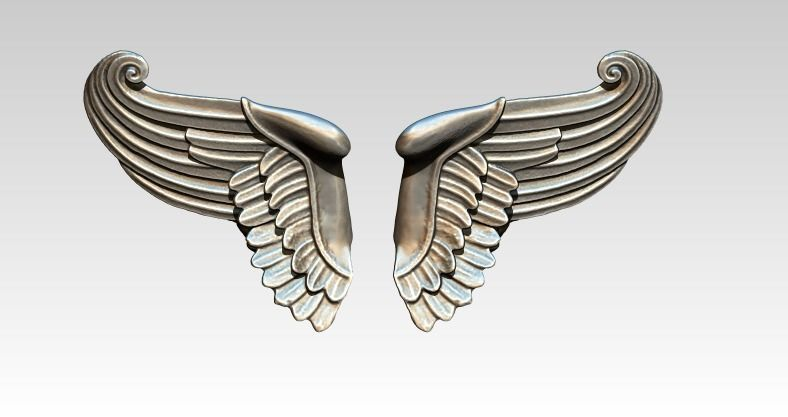 Wing bird angel pair