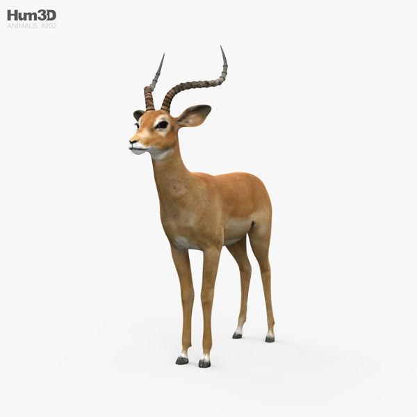 Impala HD