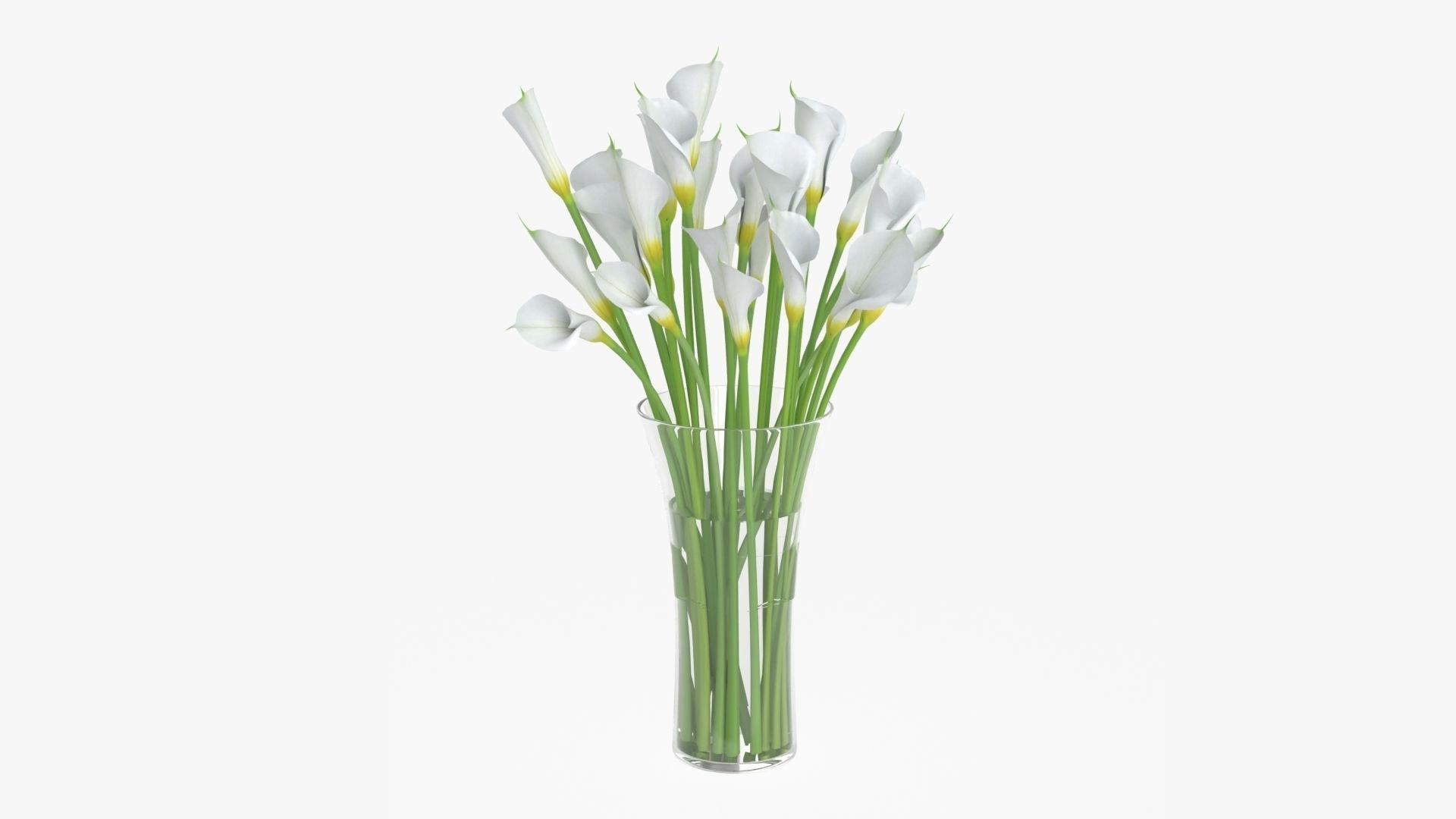 Callas flowers 04
