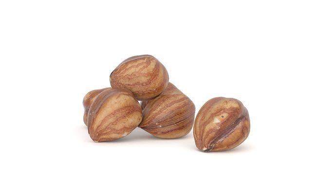 Hazelnut kernel Photoscan