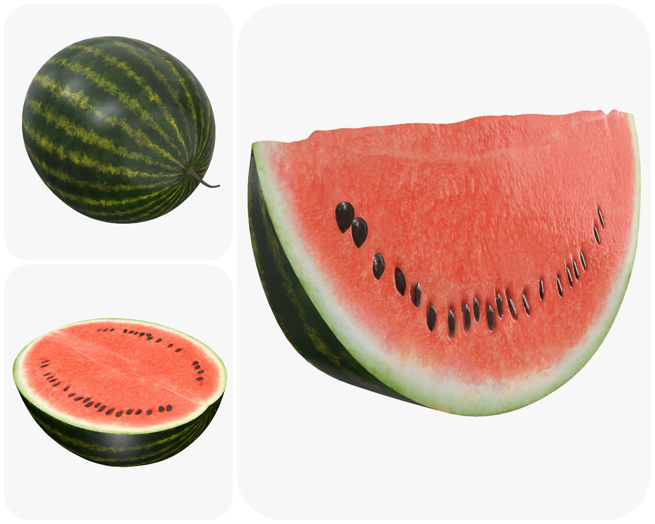 Realistic watermelon whole half sliced