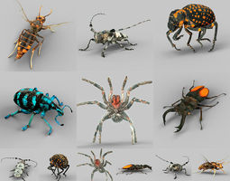 3D asset Insect Collection Vol 1