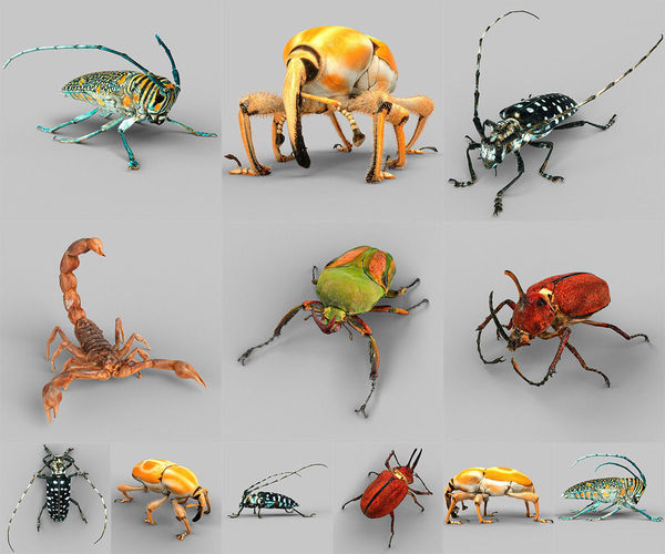 insect collection vol 2 3d model obj stl 1