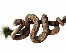 3D Anakonda Snake High Poly