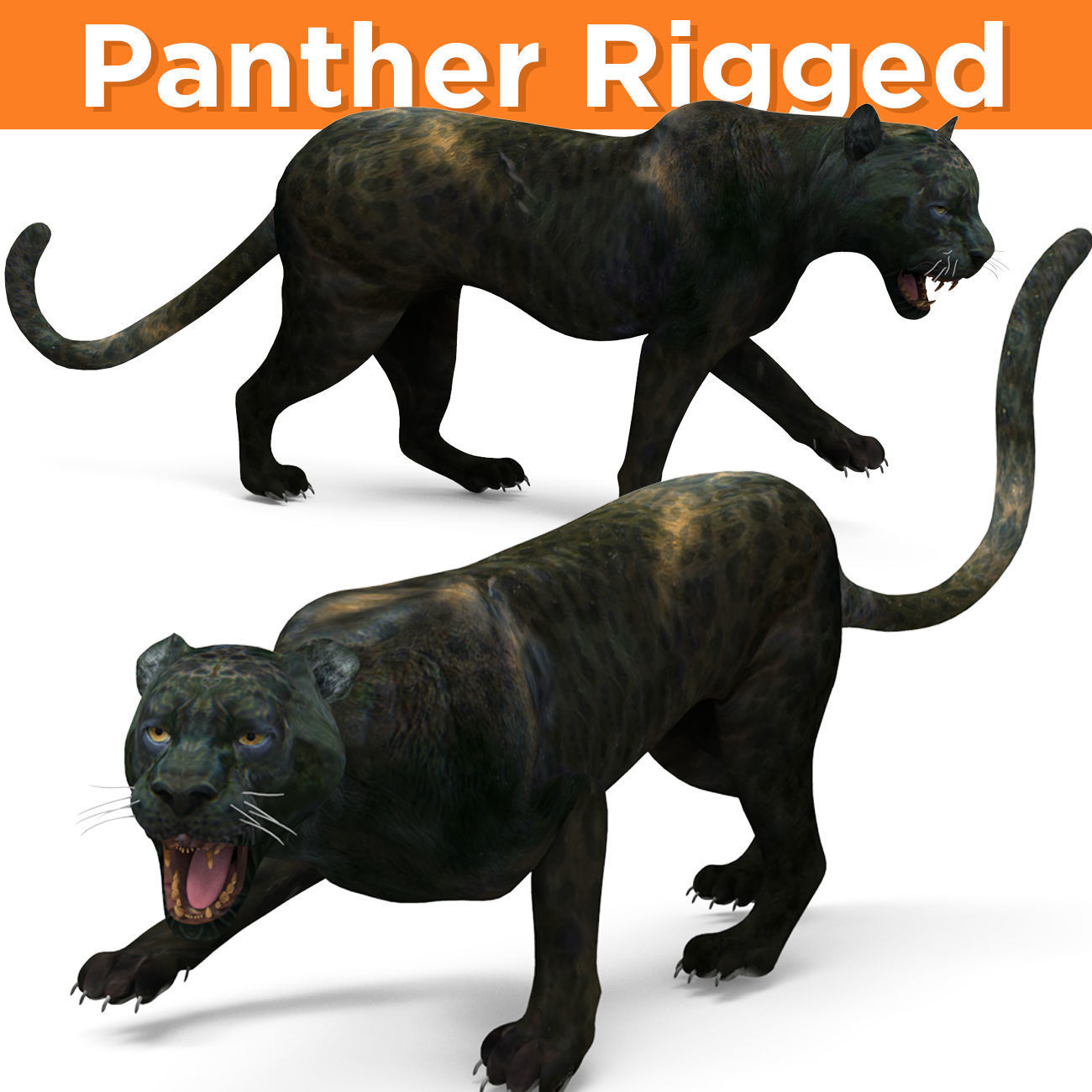 Black Panther Rigged And Animated
