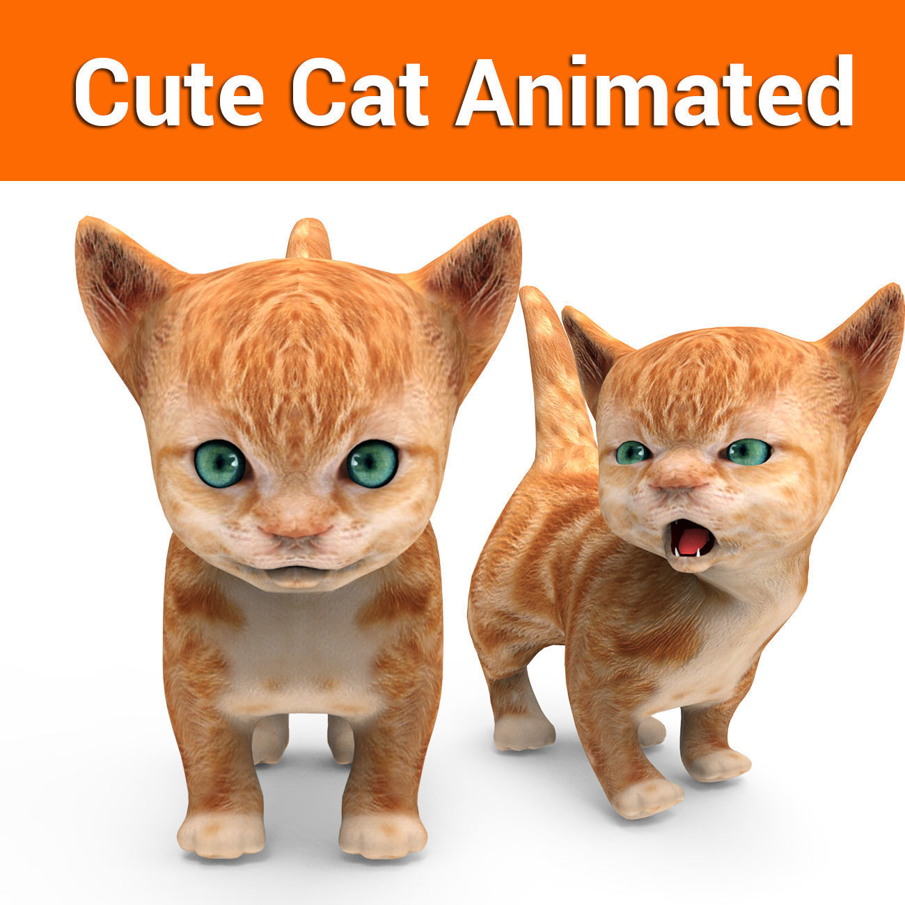 Cartoon Cat Animated