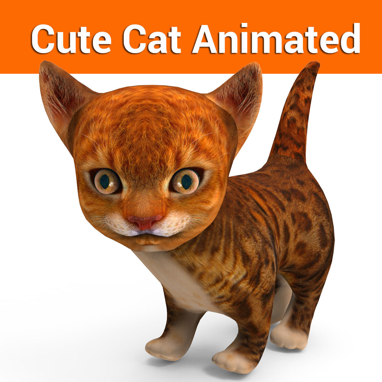 3D cute kitten cat animated model