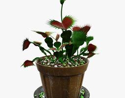 venus flytrap 3d model