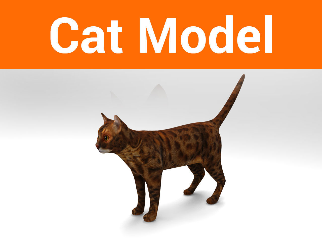 Cat game ready low poly model