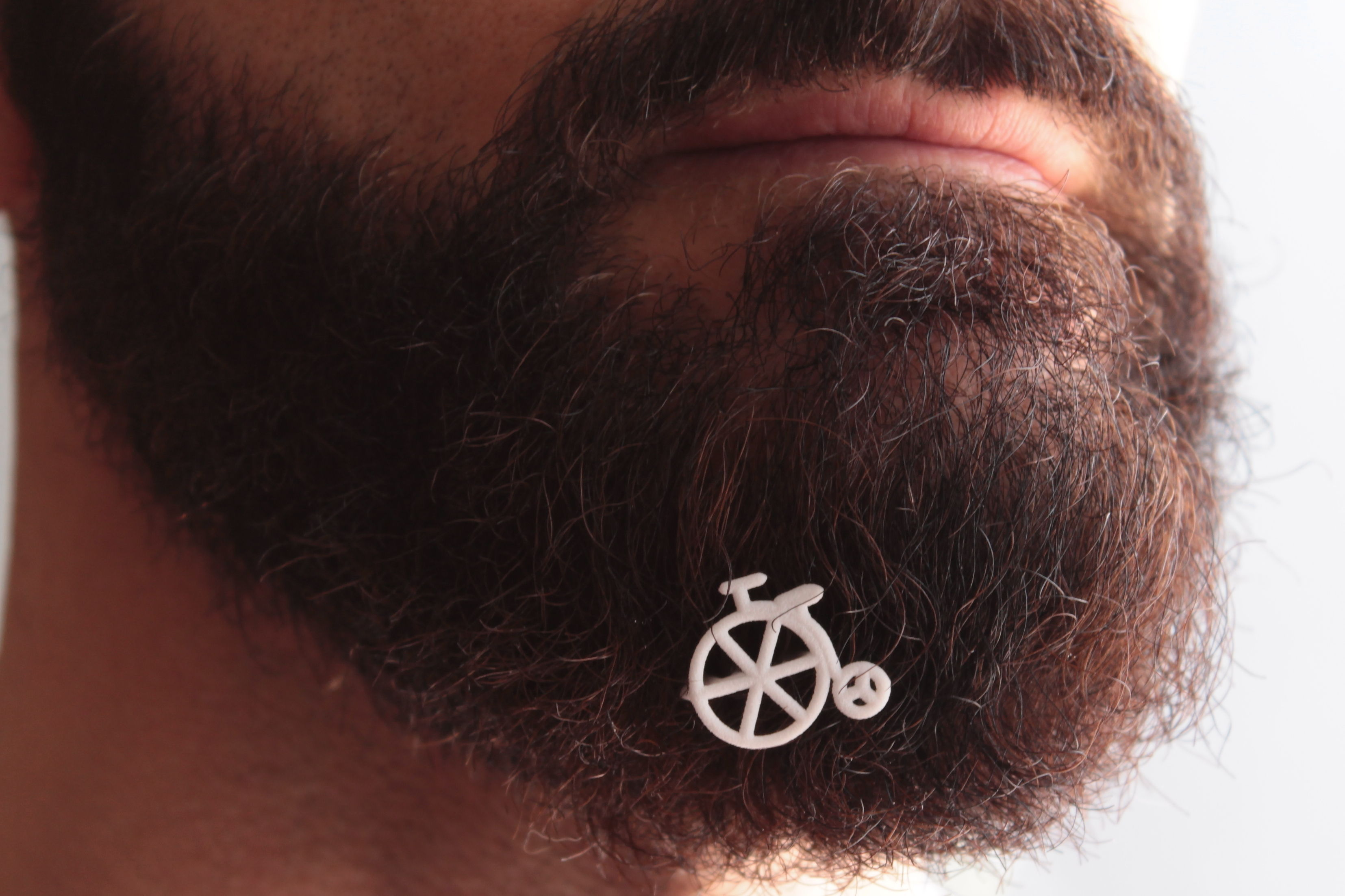 Old bike for beard - front wearing