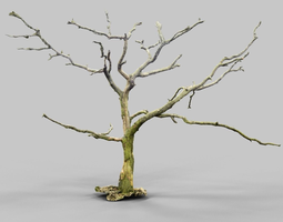 lonely dying tree 3d scan environment asset VR / AR ready