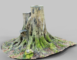 3d model big tree stumps realtime