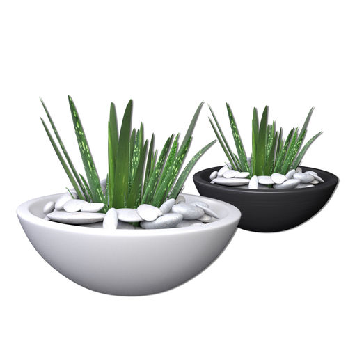 3d model aloe vera potted plant 2 cgtrader. Black Bedroom Furniture Sets. Home Design Ideas