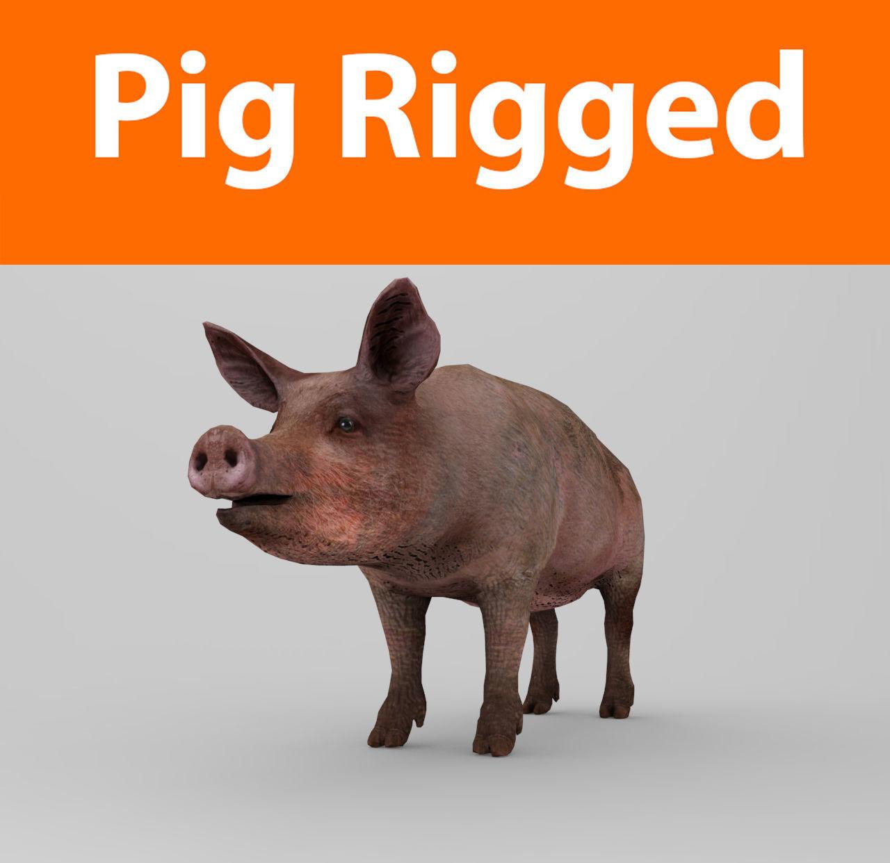 Pig Rigged Model