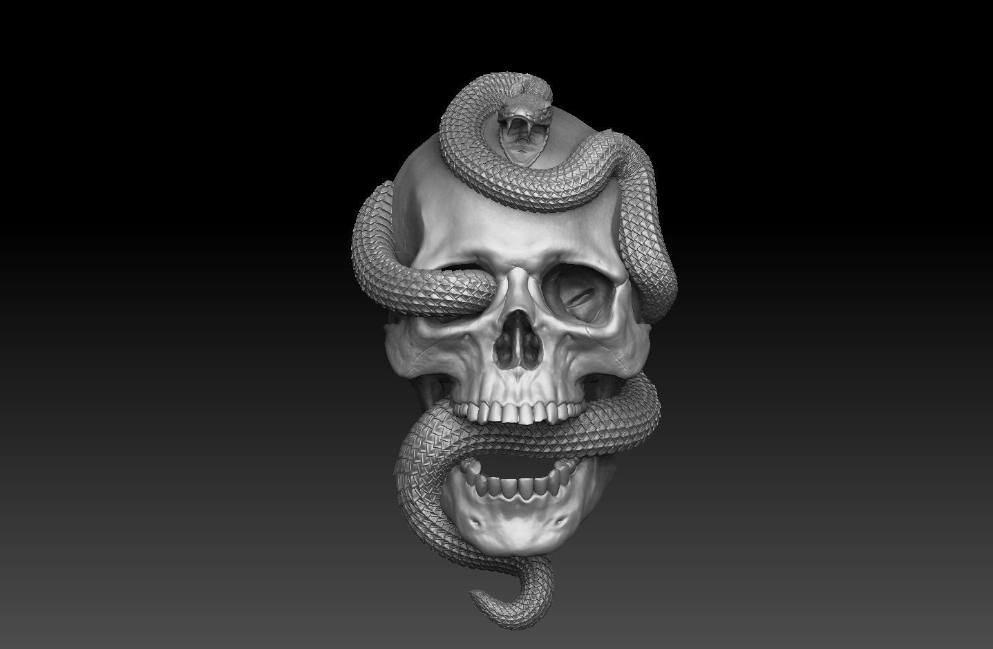 Skull with snake Bas-Relief cnc  3D print model