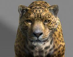 Leopard A 3D Model