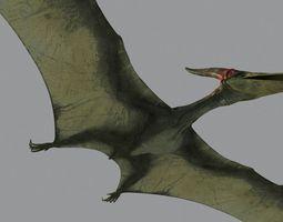 Pterodon 3D Model