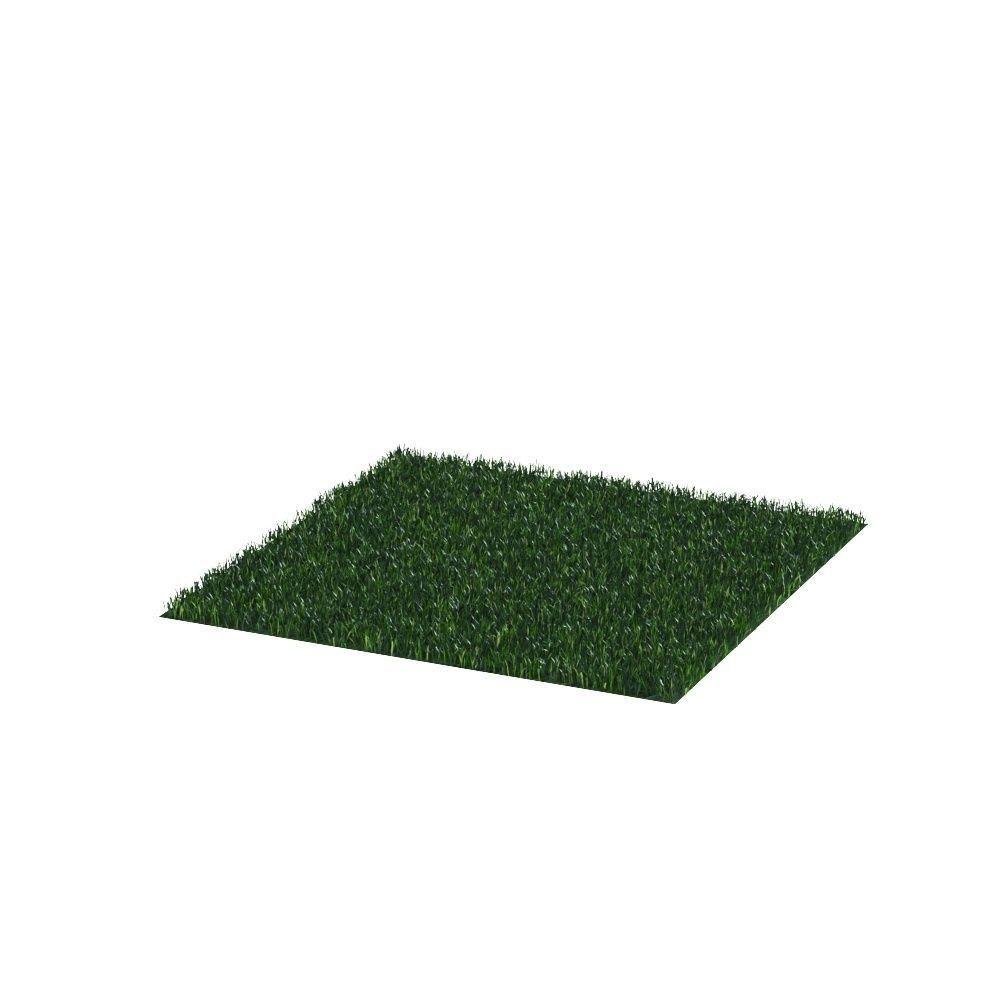 outdoor lawn lawn grass landscape