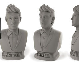 3d print model niall horan bust