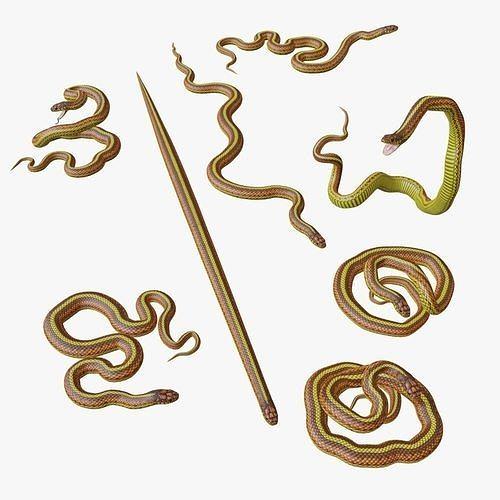 Yellow Snake - 3D Mesh