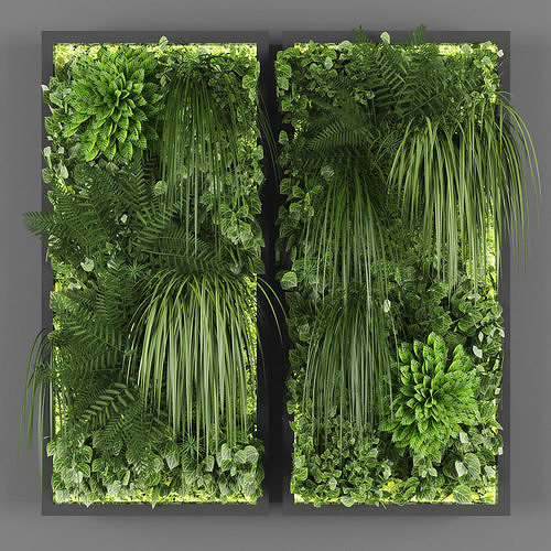Vertical garden 91