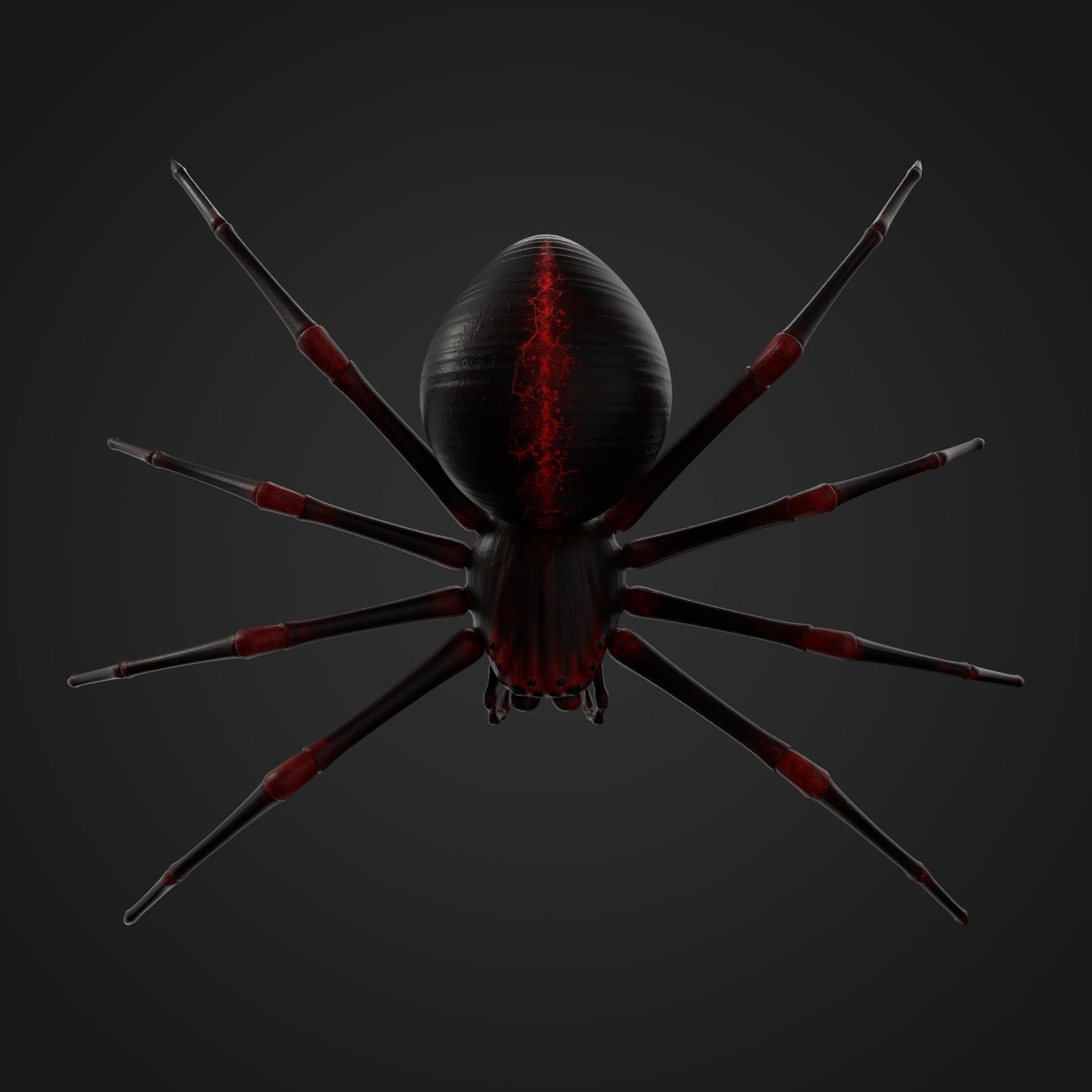Spider with 8K PBR Textures