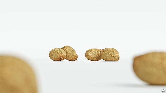 Peanut 001