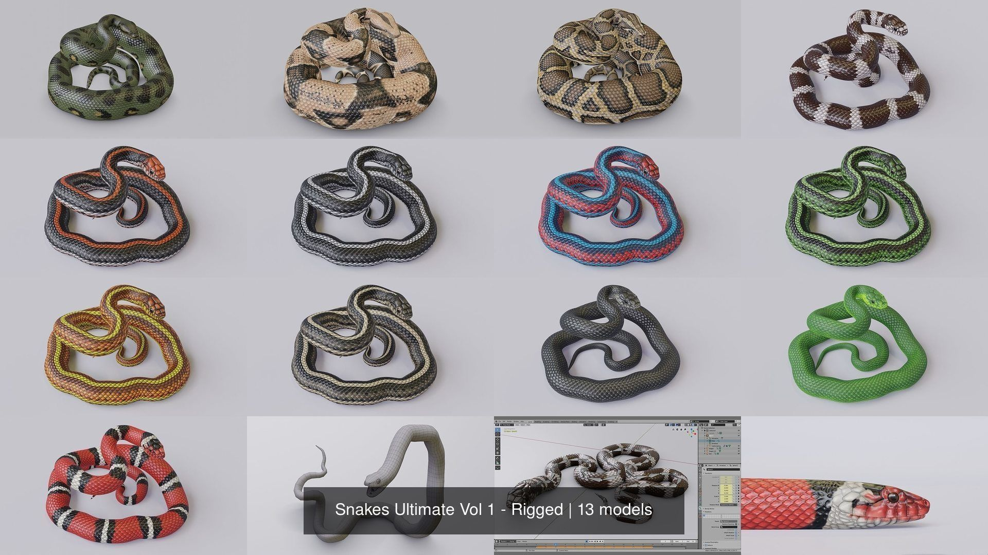 Snakes Ultimate Vol 1 - Rigged
