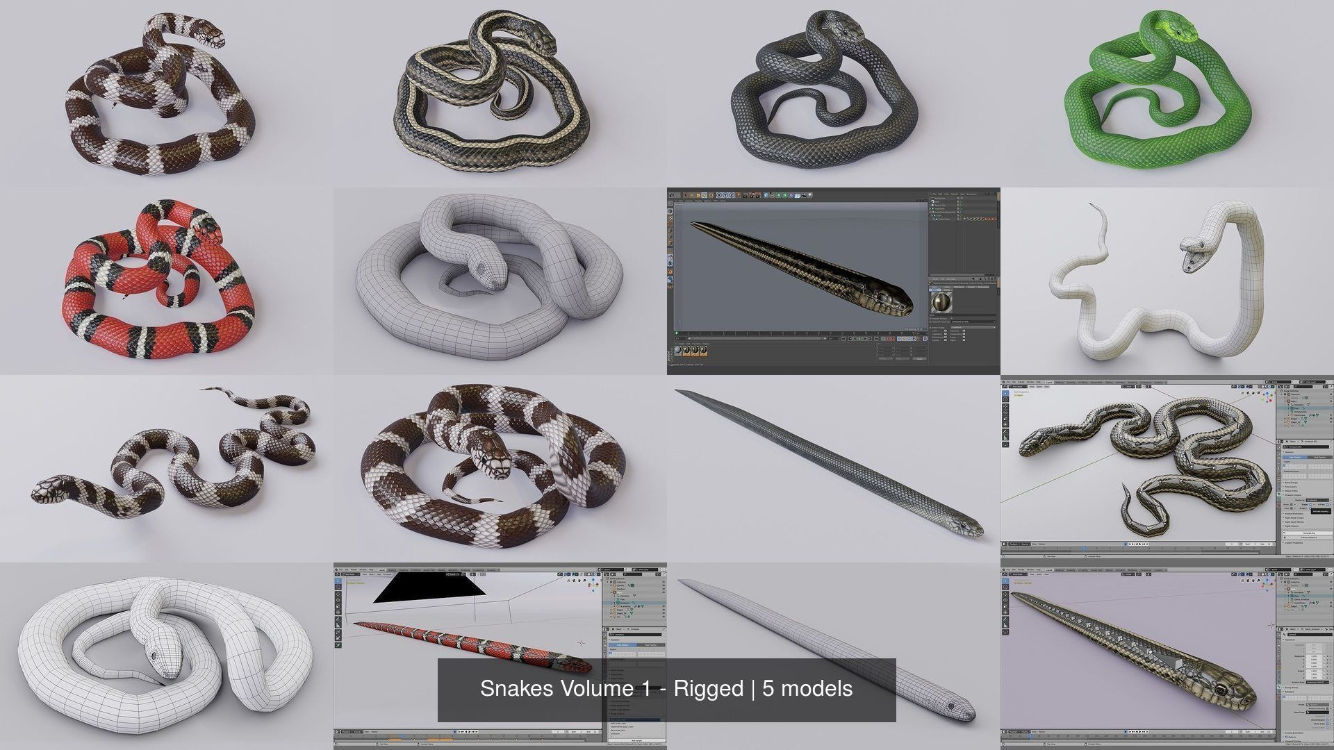 Snakes Volume 1 - Rigged