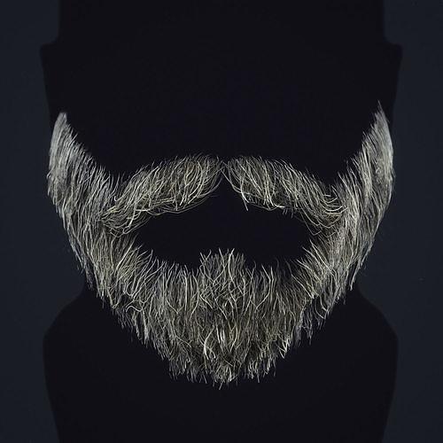 Beard RealTime 1