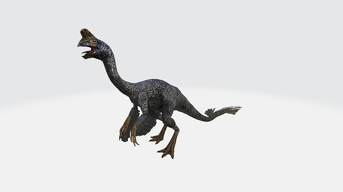 Oviraptor with Animation