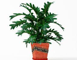 Orange Potted Plant 3D model