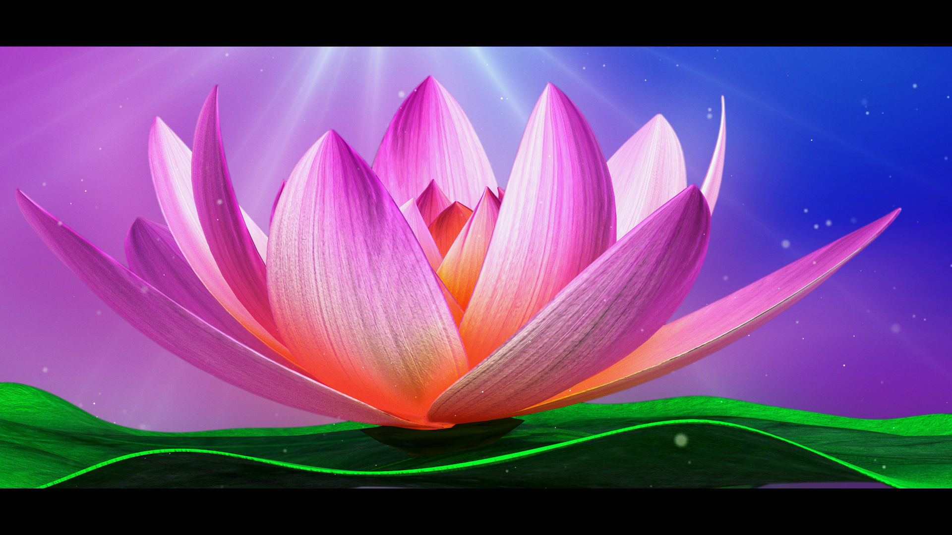 Lotus-Water Lily 3d Animated