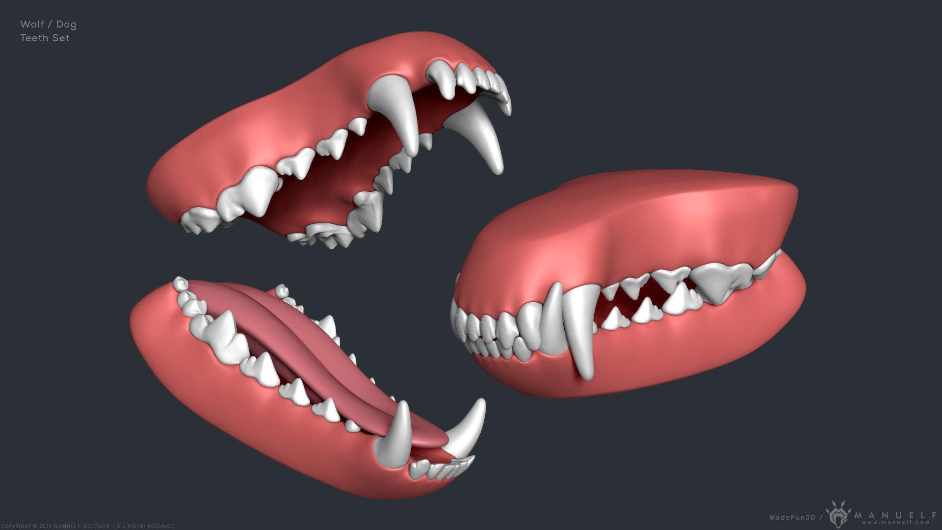 Wolf Dog Teeth Set