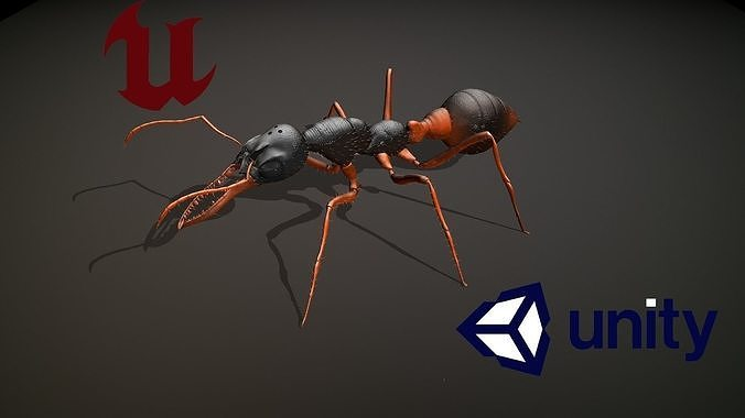Low poly Model of the character Ant Bulldog