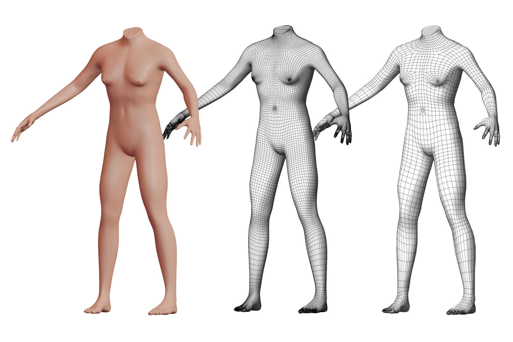 Character 08 High and Low-poly -  Body male