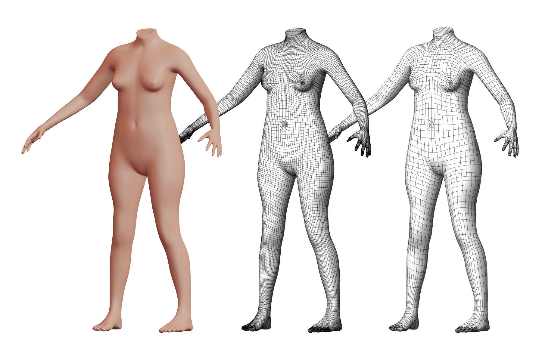Character 25 High and Low-poly -  Body Female