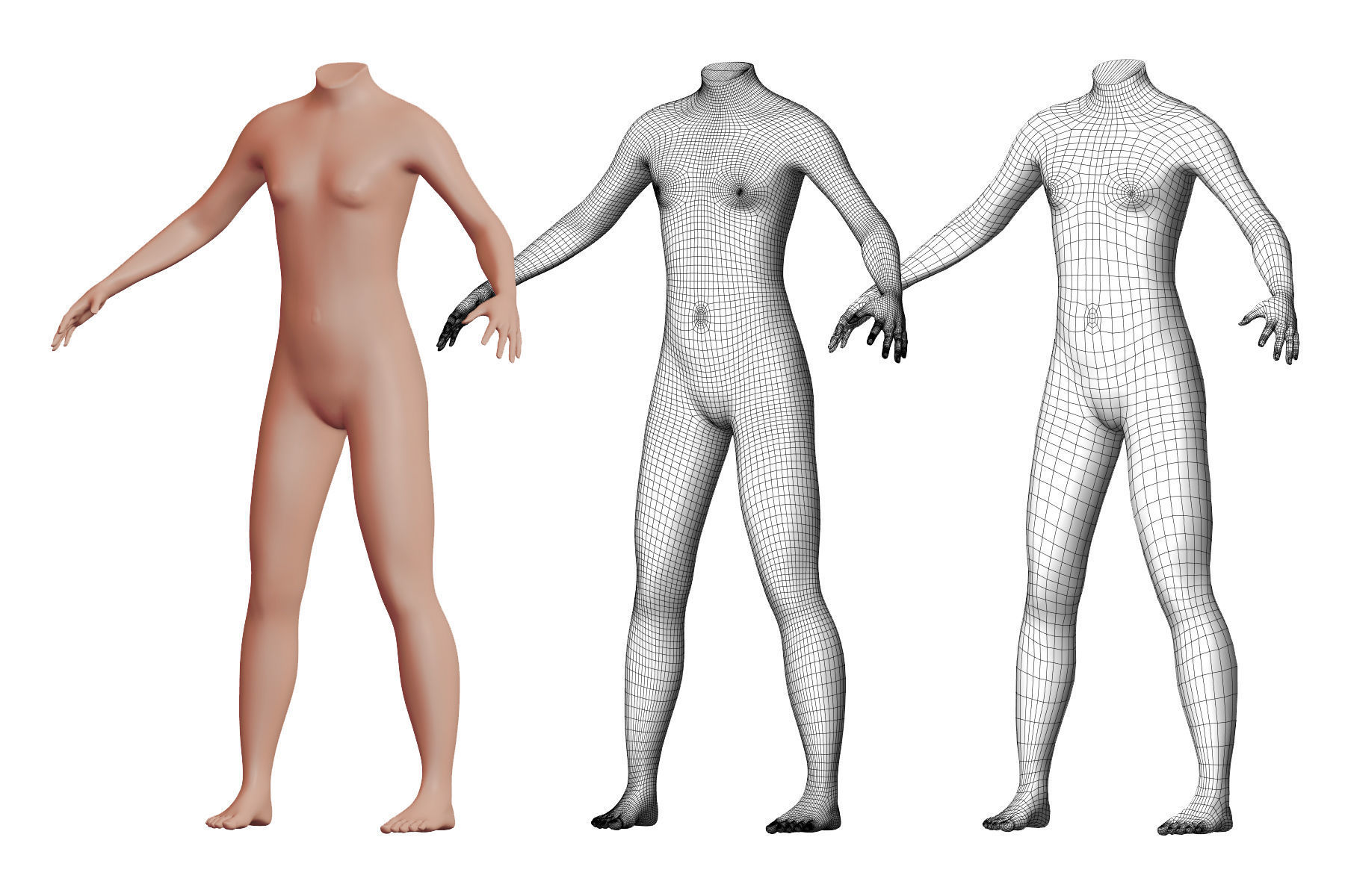 Character 36 High and Low-poly -  Body male