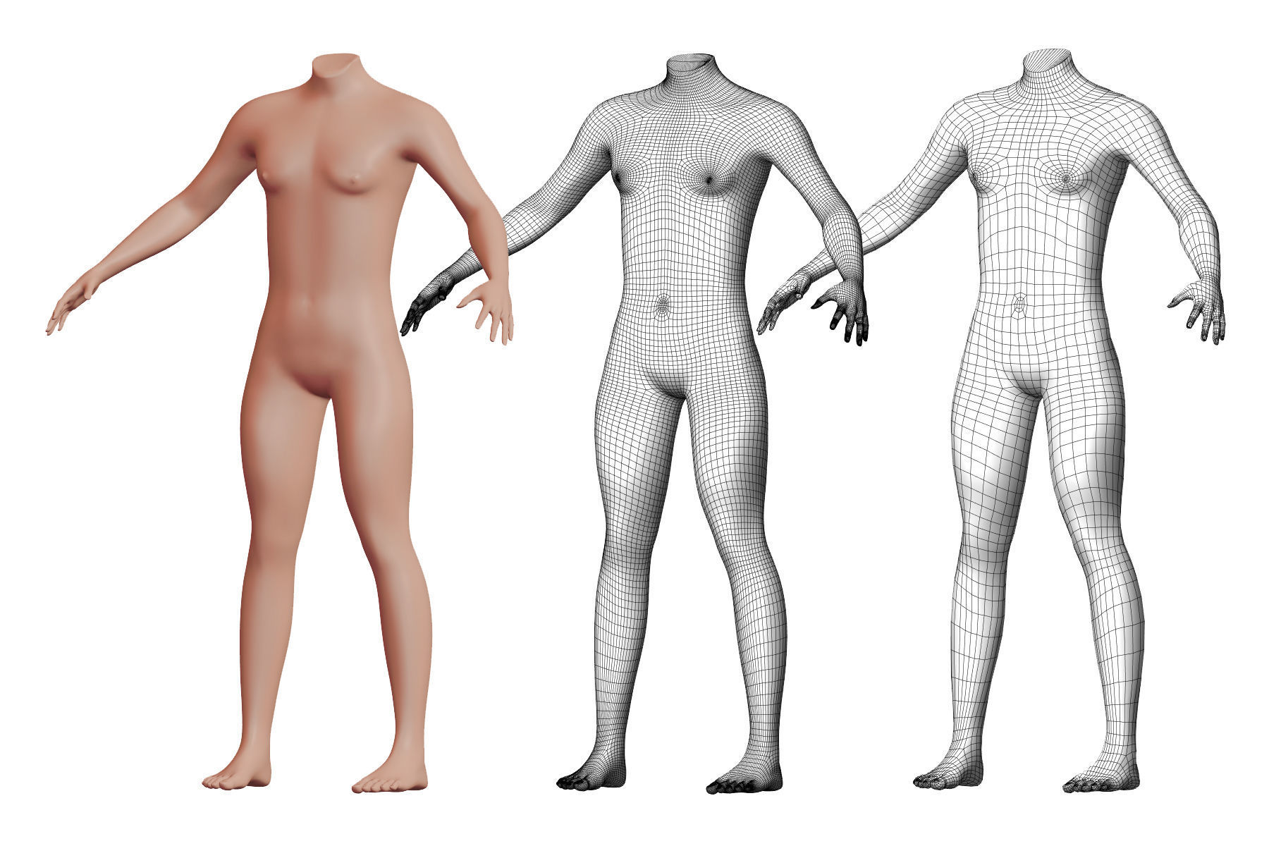 Character 44 High and Low-poly -  Body male