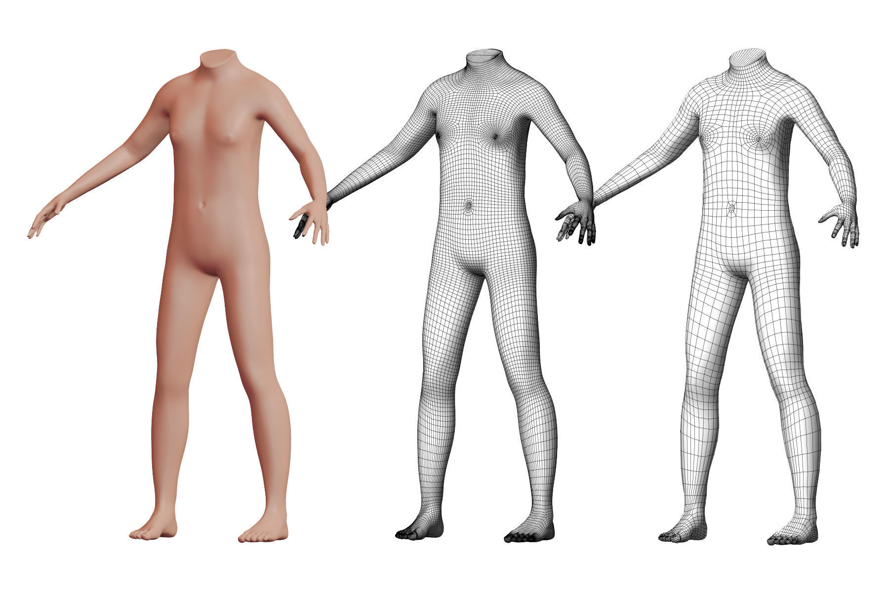 Character 47 High and Low-poly -  Body male