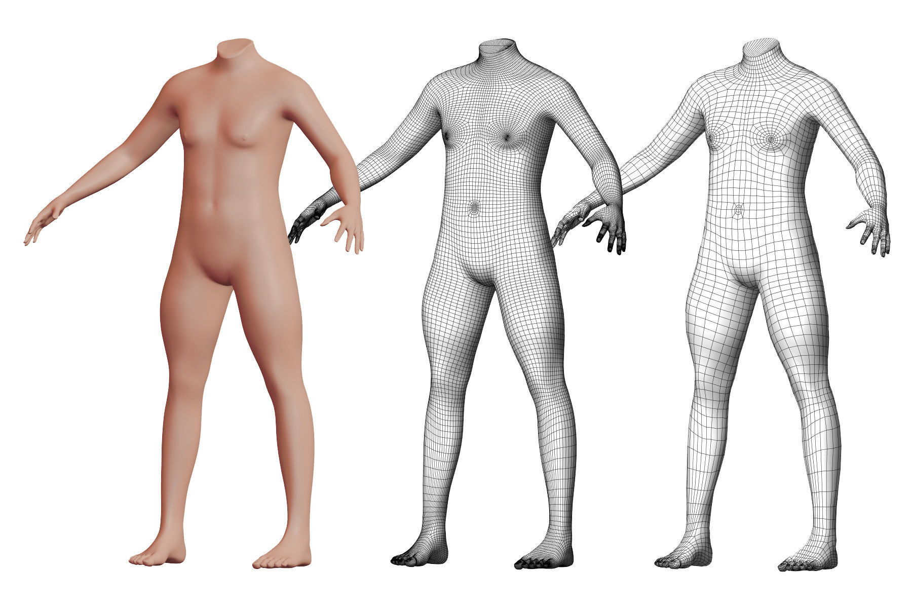 Character 50 High and Low-poly -  Body male