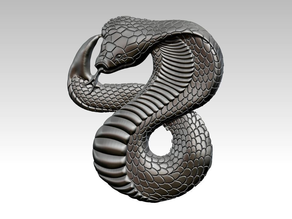 Snake Relief